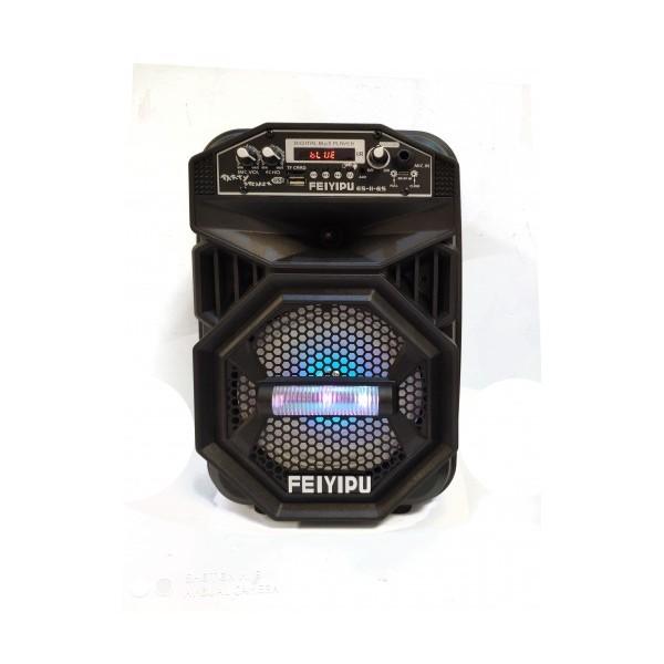 Тонколона с вграден акумулатор, MP3 плейър от SD карта и флашка, Bluetooth и безжичен микрофон за караоке FEYIPU ES-11-6S