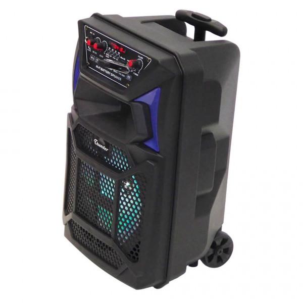 8 инча Караоке Тонколона THUNDER, THS-B801, 2 безжични Микрофона, акумулаторна батерия, Bluetooth, FM радио, USB, micro SD card player